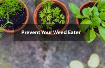 How to Prevent Your Weed Eater from Damaging