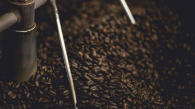 Roasting Coffee At Home: A Beginner's Guide