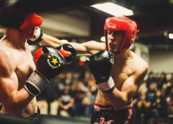 The Science of Boxing Styles