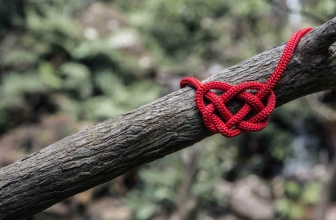 Tie the Paracord Knot if You Want to Live